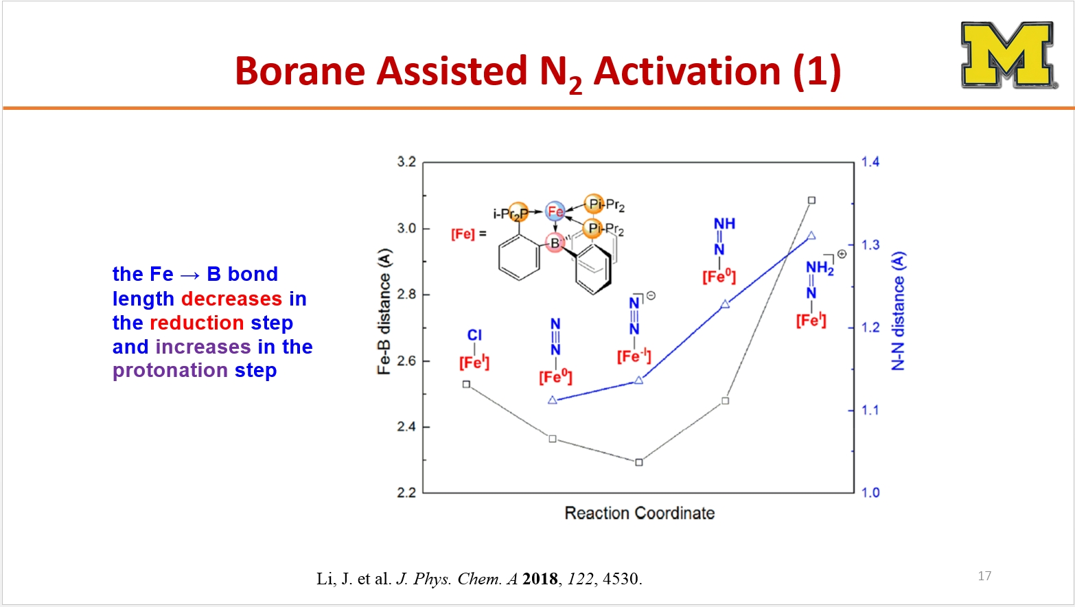 a diagram of Borane Assisted n2 activation - the fe to b bond length decreases in the reduction step and increases in the  protonation step
